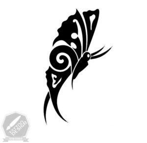 دیزاین و طرح اصلی پروانه