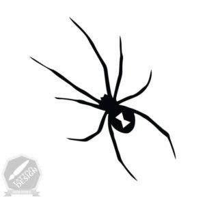 طرح خام عنکبوت